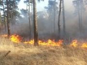 Grote brand in de Drunense Duinen